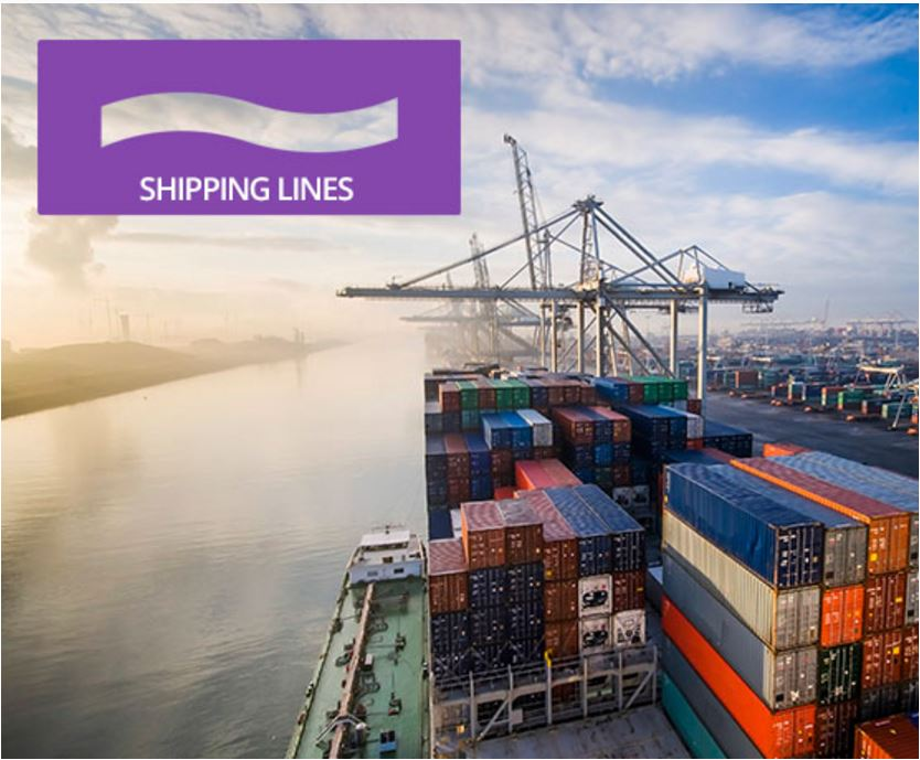 BeFlexi shipping lines